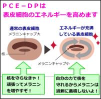 PCE-DP(ピースディーピー)の説明