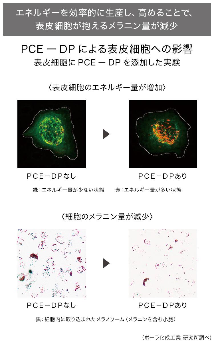 PCE-DPの説明